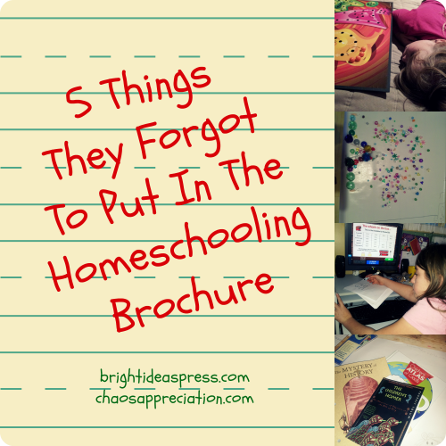 5 Things They Forgot to Put in the Homeschooling Brochure @brightideasteam