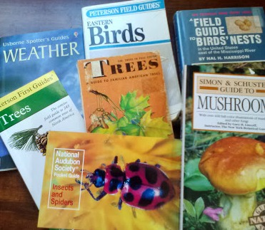 Field Guides - Can't be without them!