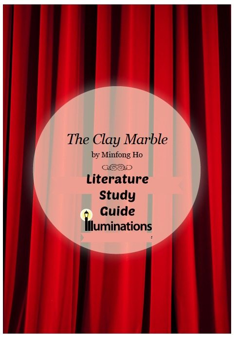 The Clay Marble Literature Study Guide