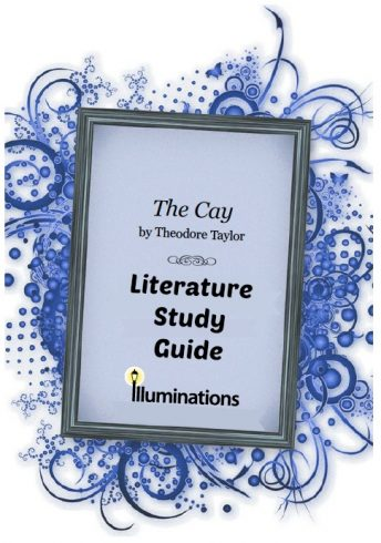 The Cay Literature Study Guide