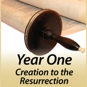 Illuminations Year 1: Creation to the Resurrection